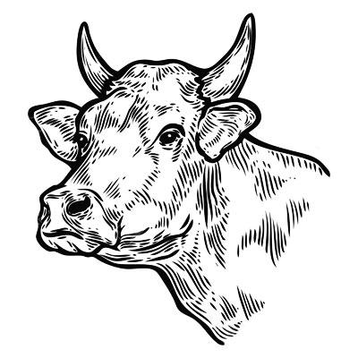 Pasteio Beef